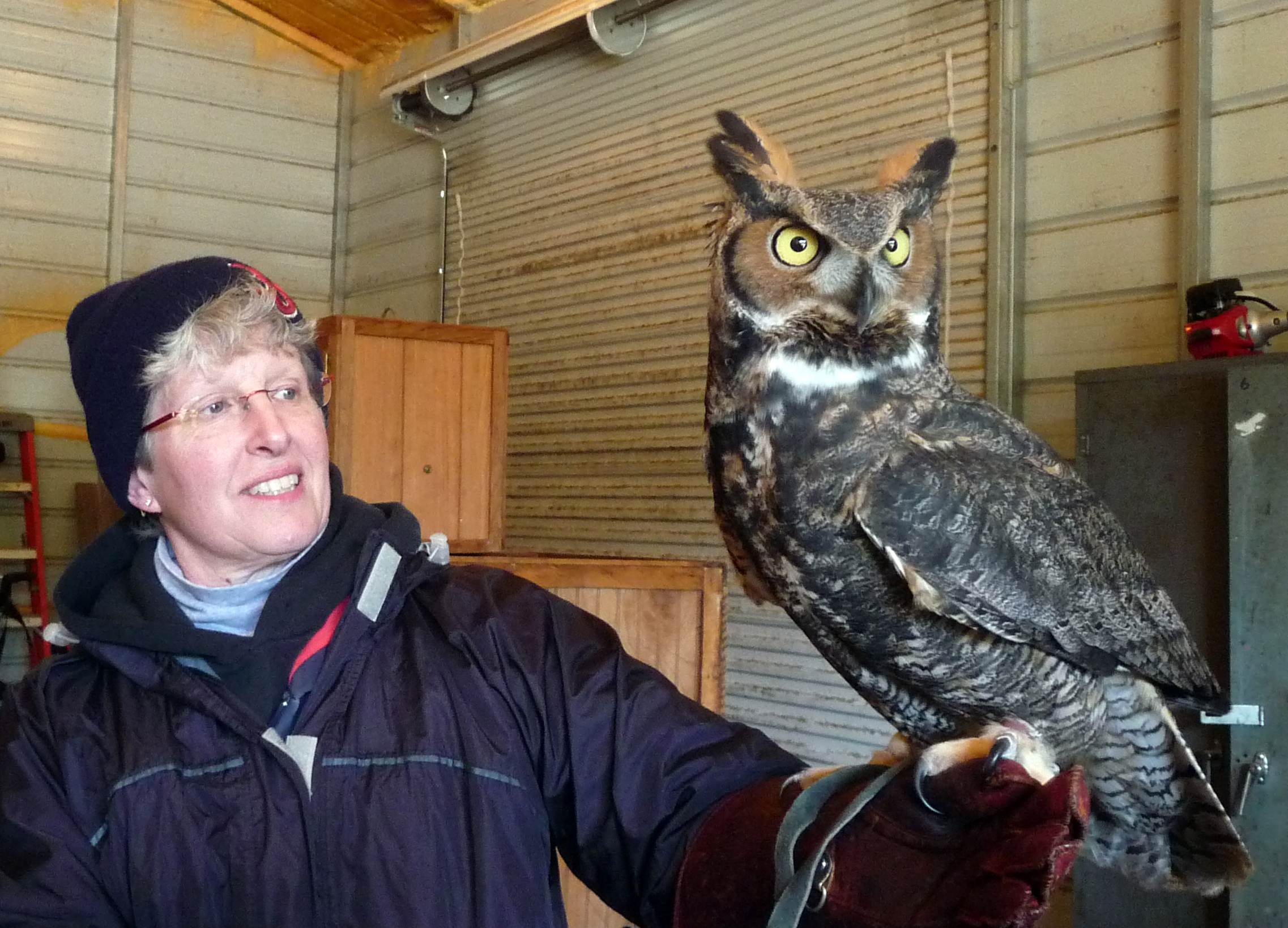 Val and Owl